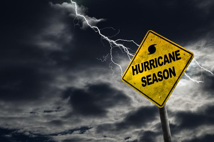 Дай имя урагану
